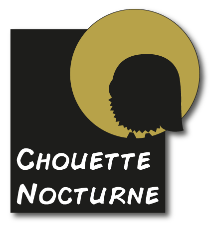 Chouette nocturne