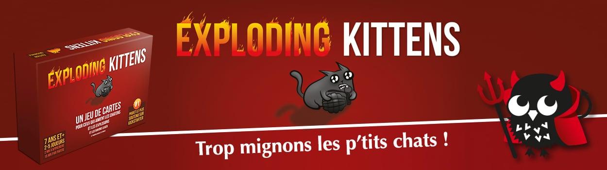 slider-eploding-kittens-12250x350
