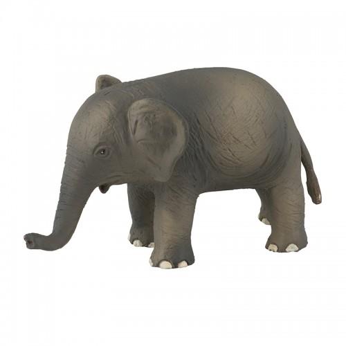 Petit éléphant (Aujourd'hui c'est mercredi)