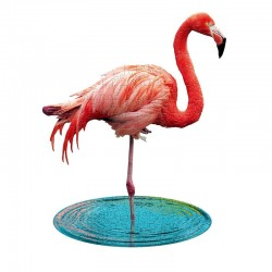 Puzzle I am : flamant rose