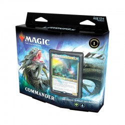 Magic the gathering : Commander Légendes