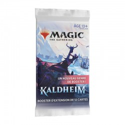 Magic the gathering : Kaldheim Set Booster