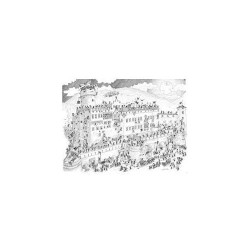 Puzzle Delle Formiche : Château