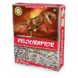 Kit Paléo : Vélociraptor