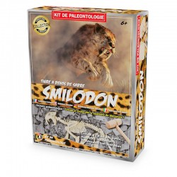 Kit Paléo : Smilodon
