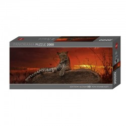 Puzzle AvH : Red Dawn