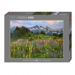 Puzzle AvH : Tatoosh Mountains