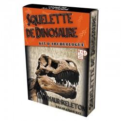 Kit Paléo : Squelette Dino