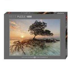 Puzzle Alexander Von Humboldt : Red Mangrove