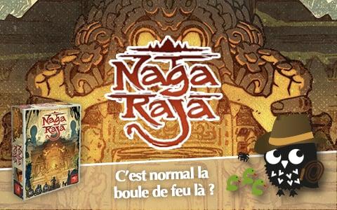 nagaraja-480x300